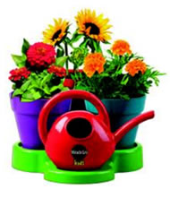 Miracle-Gro Watering Can